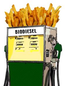biodiesel-fries